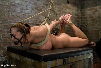 Photo number 14 from Tongue Tied & Tit Tormented Trina Michaels shot for Hogtied on Kink.com. Featuring Trina Michaels in hardcore BDSM & Fetish porn.