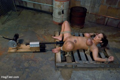 Photo number 5 from Tongue Tied & Tit Tormented Trina Michaels shot for Hogtied on Kink.com. Featuring Trina Michaels in hardcore BDSM & Fetish porn.