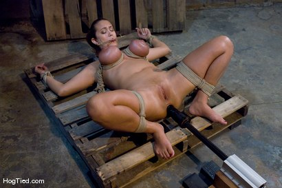 Photo number 6 from Tongue Tied & Tit Tormented Trina Michaels shot for Hogtied on Kink.com. Featuring Trina Michaels in hardcore BDSM & Fetish porn.