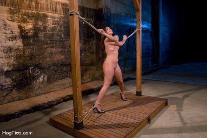 Photo number 4 from The smile has been wiped off Thea's face  shot for Hogtied on Kink.com. Featuring Thea Marie in hardcore BDSM & Fetish porn.