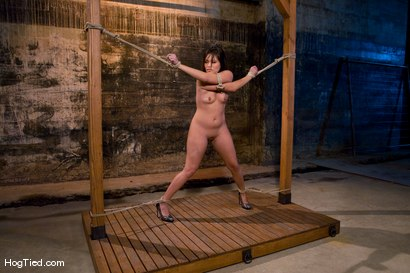 Photo number 2 from The smile has been wiped off Thea's face  shot for Hogtied on Kink.com. Featuring Thea Marie in hardcore BDSM & Fetish porn.