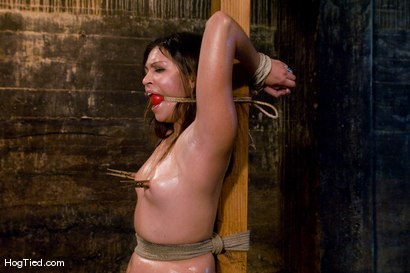 Photo number 5 from The smile has been wiped off Thea's face  shot for Hogtied on Kink.com. Featuring Thea Marie in hardcore BDSM & Fetish porn.