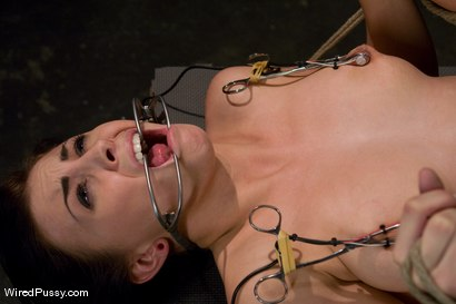 Photo number 7 from New Girl Tries Electricity for the First Time shot for Wired Pussy on Kink.com. Featuring Claire Adams and Jackie Daniels in hardcore BDSM & Fetish porn.