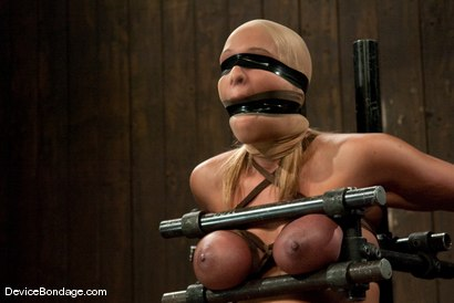 Photo number 9 from Mellanie Monroe<br> A tribute to the classic Insex (1999-2001) shot for Device Bondage on Kink.com. Featuring Mellanie Monroe in hardcore BDSM & Fetish porn.