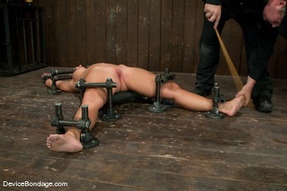Photo number 13 from Mellanie Monroe <br> Happy Thanksgiving. shot for Device Bondage on Kink.com. Featuring Mellanie Monroe in hardcore BDSM & Fetish porn.