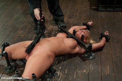 Photo number 5 from Mellanie Monroe <br> Happy Thanksgiving. shot for Device Bondage on Kink.com. Featuring Mellanie Monroe in hardcore BDSM & Fetish porn.