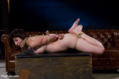 Photo number 13 from Amateur Casting Couch:  Any is ready any time, any where in any hole.... shot for Hogtied on Kink.com. Featuring Any in hardcore BDSM & Fetish porn.