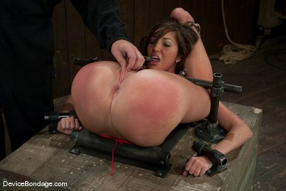Photo number 8 from Angelica Saige   Sexy college girls are sexy. shot for Device Bondage on Kink.com. Featuring Angelica Saige in hardcore BDSM & Fetish porn.