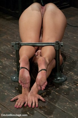 Photo number 11 from Angelica Saige<br>20yr old co-ed trapped by only one bar <br> brutally fucked by a machine! shot for Device Bondage on Kink.com. Featuring Angelica Saige in hardcore BDSM & Fetish porn.