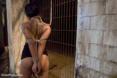 Photo number 10 from Dragonlily Exposed shot for Wired Pussy on Kink.com. Featuring Princess Donna Dolore and DragonLily in hardcore BDSM & Fetish porn.