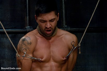 Photo number 6 from Bound Gods First Live Shoot shot for Bound Gods on Kink.com. Featuring Spencer Reed, Van Darkholme and Dominic Pacifico in hardcore BDSM & Fetish porn.