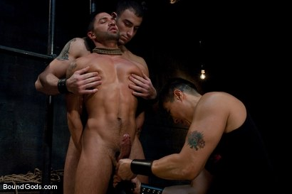 Photo number 3 from Bound Gods First Live Shoot shot for Bound Gods on Kink.com. Featuring Spencer Reed, Van Darkholme and Dominic Pacifico in hardcore BDSM & Fetish porn.