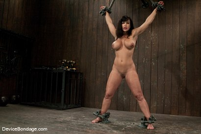 Photo number 12 from Lisa Ann<br>She played Sarah Palin for porn, lets just see how rogue she really is. shot for Device Bondage on Kink.com. Featuring Lisa Ann in hardcore BDSM & Fetish porn.