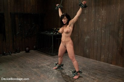 Photo number 13 from Lisa Ann<br>She played Sarah Palin for porn, lets just see how rogue she really is. shot for Device Bondage on Kink.com. Featuring Lisa Ann in hardcore BDSM & Fetish porn.