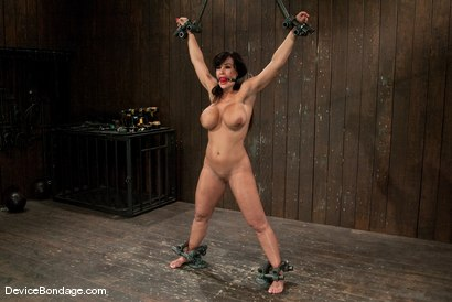 Photo number 7 from Lisa Ann<br>She played Sarah Palin for porn, lets just see how rogue she really is. shot for Device Bondage on Kink.com. Featuring Lisa Ann in hardcore BDSM & Fetish porn.
