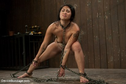 Photo number 9 from DragonLily<br> The Hardest Predicament Of All  shot for Device Bondage on Kink.com. Featuring DragonLily in hardcore BDSM & Fetish porn.