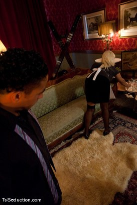 Photo number 2 from The New Maid <br> Annalise  shot for TS Seduction on Kink.com. Featuring Annalise and Lobo in hardcore BDSM & Fetish porn.
