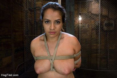 Photo number 11 from Pepper Foxxx: Big orgasms small body shot for Hogtied on Kink.com. Featuring Pepper Foxxx in hardcore BDSM & Fetish porn.