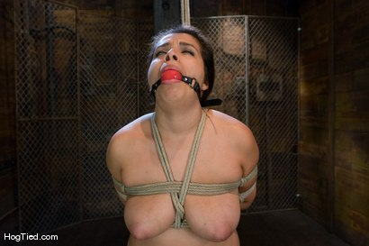 Photo number 12 from Pepper Foxxx: Big orgasms small body shot for Hogtied on Kink.com. Featuring Pepper Foxxx in hardcore BDSM & Fetish porn.