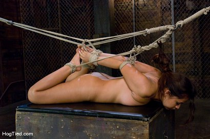 Photo number 14 from Pepper Foxxx: Big orgasms small body shot for Hogtied on Kink.com. Featuring Pepper Foxxx in hardcore BDSM & Fetish porn.