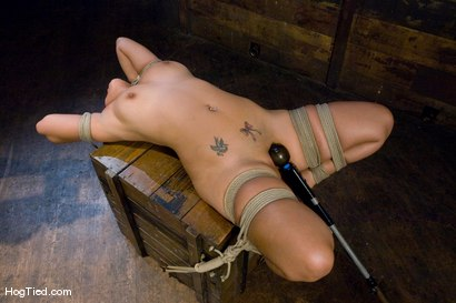 Photo number 7 from Pepper Foxxx: Big orgasms small body shot for Hogtied on Kink.com. Featuring Pepper Foxxx in hardcore BDSM & Fetish porn.