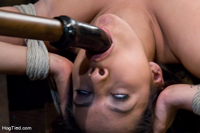 Photo number 8 from Pepper Foxxx: Big orgasms small body shot for Hogtied on Kink.com. Featuring Pepper Foxxx in hardcore BDSM & Fetish porn.