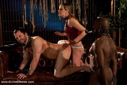 Photo number 10 from Merry Christmas Slaveboys! Bonus: Live Divine Bitches Launch Show! shot for Divine Bitches on Kink.com. Featuring Jack Hammer, Maitresse Madeline Marlowe  and David Chase in hardcore BDSM & Fetish porn.