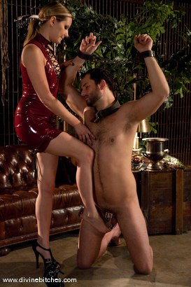Photo number 14 from Merry Christmas Slaveboys! Bonus: Live Divine Bitches Launch Show! shot for Divine Bitches on Kink.com. Featuring Jack Hammer, Maitresse Madeline Marlowe and David Chase in hardcore BDSM & Fetish porn.
