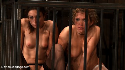 Photo number 12 from Amber Rayne, Rain DeGrey, and Ariel X<br> Part 4 of 4 of the October Live show shot for Device Bondage on Kink.com. Featuring Amber Rayne, Ariel X and Rain DeGrey in hardcore BDSM & Fetish porn.