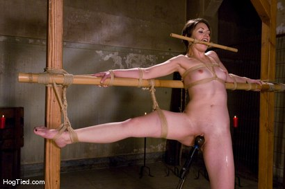 Photo number 7 from Sarah Shevon fist fucked by Felony shot for Hogtied on Kink.com. Featuring Felony and Sarah Shevon in hardcore BDSM & Fetish porn.