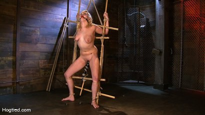 Photo number 7 from Big Titted Lacey Jane shot for Hogtied on Kink.com. Featuring Lacey Jane in hardcore BDSM & Fetish porn.
