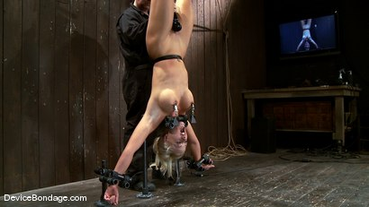 Photo number 14 from Holly Heart<br> Former collegiate athlete upside down, butt plugged, and made to cum! shot for Device Bondage on Kink.com. Featuring Holly Heart in hardcore BDSM & Fetish porn.