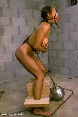 Photo number 3 from Kelana shot for Hogtied on Kink.com. Featuring Kelana in hardcore BDSM & Fetish porn.