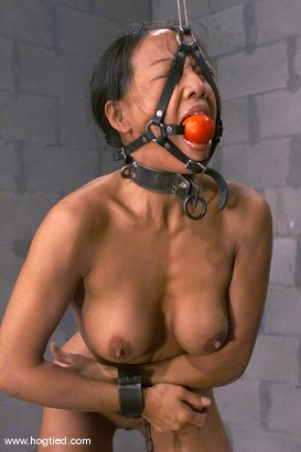 Photo number 4 from Kelana shot for Hogtied on Kink.com. Featuring Kelana in hardcore BDSM & Fetish porn.