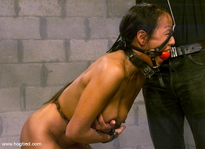 Photo number 2 from Kelana shot for Hogtied on Kink.com. Featuring Kelana in hardcore BDSM & Fetish porn.