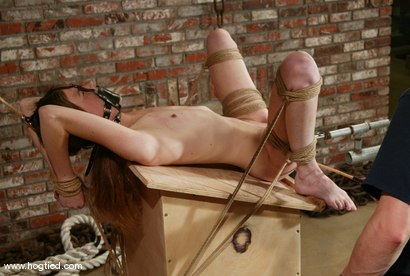 Photo number 13 from Ashley shot for Hogtied on Kink.com. Featuring Ashley in hardcore BDSM & Fetish porn.