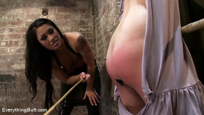 Photo number 3 from Lacey becomes DragonLily's Anal Playtoy shot for Everything Butt on Kink.com. Featuring Lacey Jane and DragonLily in hardcore BDSM & Fetish porn.