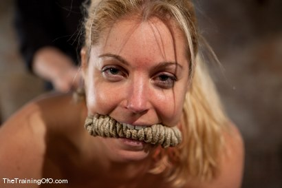 Photo number 1 from The Training of Hollie Stevens Day One shot for The Training Of O on Kink.com. Featuring Hollie Stevens and Maestro in hardcore BDSM & Fetish porn.