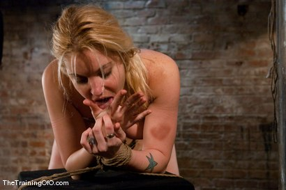 Photo number 15 from The Training of Hollie Stevens Day One shot for The Training Of O on Kink.com. Featuring Hollie Stevens and Maestro in hardcore BDSM & Fetish porn.