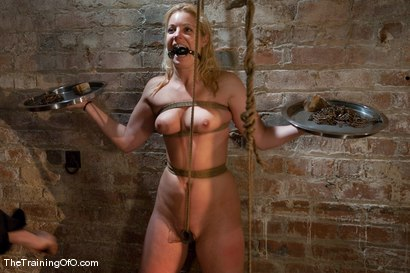 Photo number 5 from The Training of Hollie Stevens Day One shot for The Training Of O on Kink.com. Featuring Hollie Stevens and Maestro in hardcore BDSM & Fetish porn.