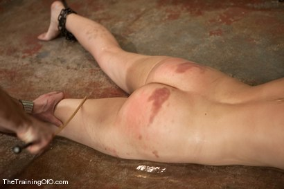 Photo number 15 from The Training of Holly Stevens Day Four shot for The Training Of O on Kink.com. Featuring Hollie Stevens, Maestro and Curt Wooster in hardcore BDSM & Fetish porn.