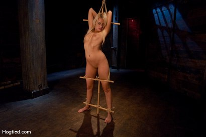 Photo number 11 from Smoking Hot Mallory Rae shot for Hogtied on Kink.com. Featuring Mallory Rae Murphy in hardcore BDSM & Fetish porn.