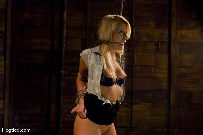 Photo number 2 from Smoking Hot Mallory Rae shot for Hogtied on Kink.com. Featuring Mallory Rae Murphy in hardcore BDSM & Fetish porn.