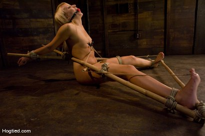 Photo number 8 from Smoking Hot Mallory Rae shot for Hogtied on Kink.com. Featuring Mallory Rae Murphy in hardcore BDSM & Fetish porn.