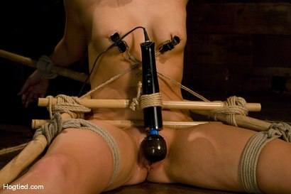Photo number 9 from Smoking Hot Mallory Rae shot for Hogtied on Kink.com. Featuring Mallory Rae Murphy in hardcore BDSM & Fetish porn.