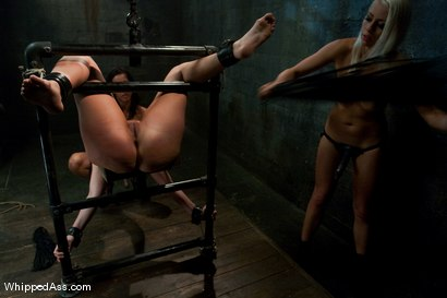 Photo number 14 from Plaything: Hollie Stevens shot for Whipped Ass on Kink.com. Featuring Isis Love, Lorelei Lee and Hollie Stevens in hardcore BDSM & Fetish porn.