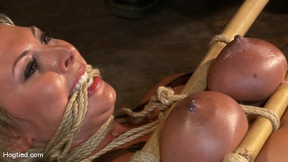 Photo number 5 from Skylar Price: Blond Bombshell Bamboo Bound  shot for Hogtied on Kink.com. Featuring Skylar Price in hardcore BDSM & Fetish porn.