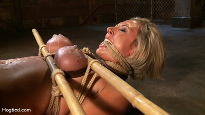 Photo number 7 from Skylar Price: Blond Bombshell Bamboo Bound  shot for Hogtied on Kink.com. Featuring Skylar Price in hardcore BDSM & Fetish porn.