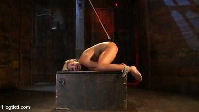 Photo number 9 from Skylar Price: Blond Bombshell Bamboo Bound  shot for Hogtied on Kink.com. Featuring Skylar Price in hardcore BDSM & Fetish porn.