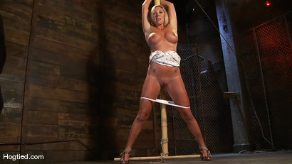 Photo number 3 from Skylar Price: Blond Bombshell Bamboo Bound  shot for Hogtied on Kink.com. Featuring Skylar Price in hardcore BDSM & Fetish porn.